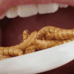 degustation d'insecte anniversaire insolite paris evjf
